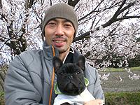 フレンチブルドッグフォーン子犬